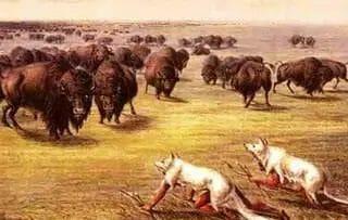 blackfoot skinwalker hunting